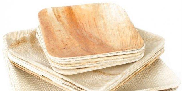 Compostable Palm Leaf Plate